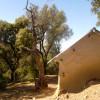 Le marabout de Kalât Ourrech (Jaya-région de Taounate)
